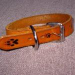 DCP-xlrg Dog Collar