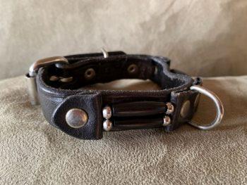 DCSS Dog Collar